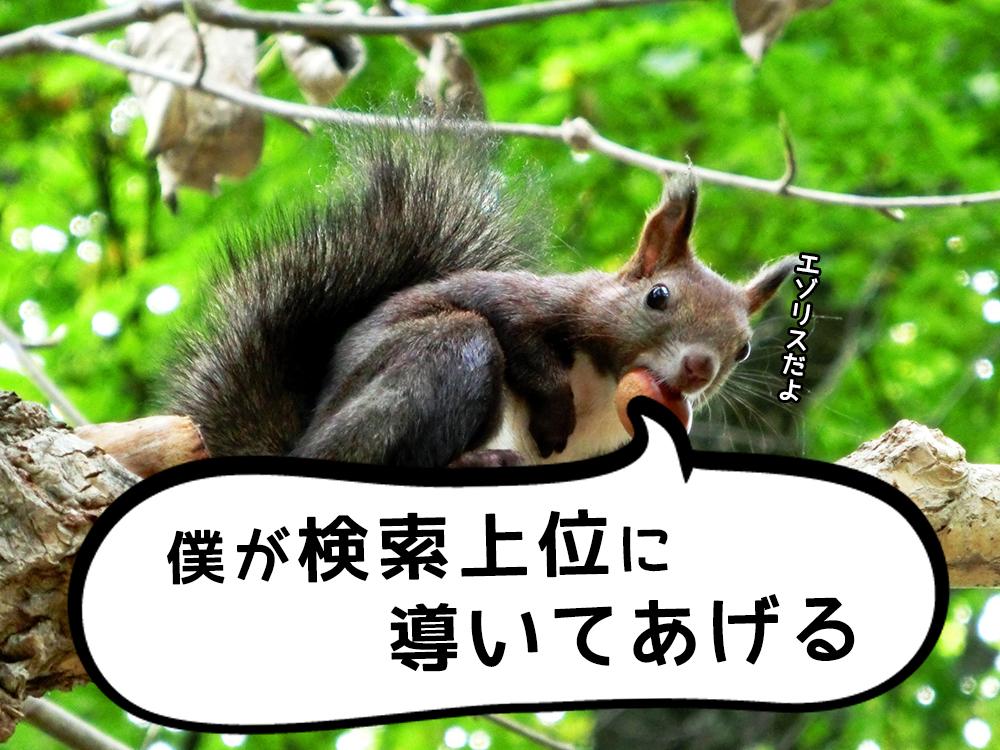 狙ったSEOキーワード!検索上位にあるコンテンツの平均文字数は?『ezorisu-seo.jp』で分かるよ!
